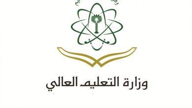 التعليم العالى2 390x220 - تطبيق وزارة التعليم العالي الرسمي يحمل بعض الخدمات الإلكترونية التي تقدمها الوزارة