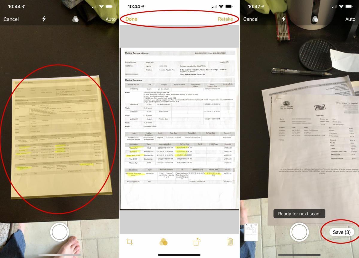 2 4 - بالصور.. تعرف على كيفية إنشاء ملفات PDF بآيفون وآيباد باستخدام  تطبيق الملاحظات