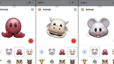 Animoji and Memoji Stickers 390x220 - نظام تشغيل iOS 13 الجديد من آبل يحتوي على ثلاثة رموز Animoji جديدة مميزة