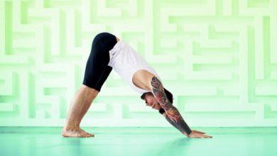 yoga workout header 390x220 - تطبيق Daily Yoga به مكتبة كبيرة تحتوي على 500 وضعيه للرياضه اليوغا